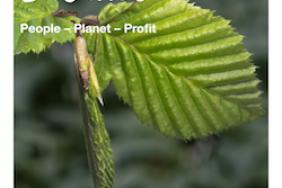Innovating for Balance People - Planet - Profit Image
