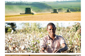 Olam International Combines Financial and Sustainability Reporting to Highlight Importance of Creating Holistic Value Image
