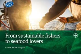 New Report Shows Accelerated Growth in the Sustainable Seafood Supply Chain as MSC Certified Catch Nears 10 Million Tonnes Image