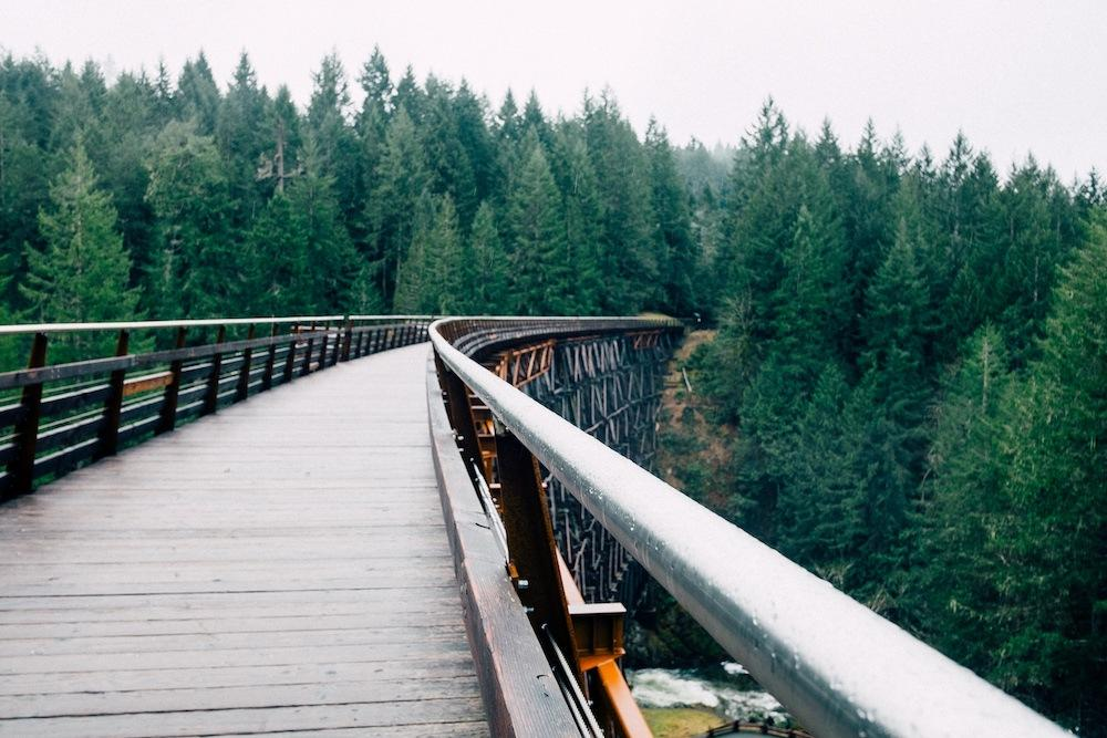2016-05-Life-of-Pix-free-stock-bridge-forest-firs-PaulJarvis.jpg