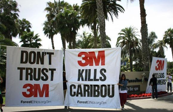 3m-sustainable-brand-protest1.jpg