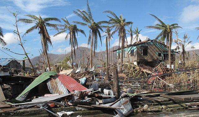 640px-A_few_palm_trees_remain_standing_amid_the_destruction_caused_by_Typhoon_Haiyan_in_the_city_of_Tacloban_Philippines_11290331484.jpg