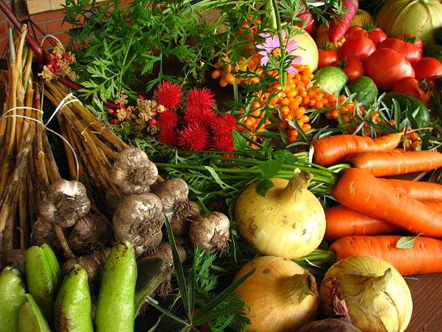 640px-Ecologically_grown_vegetables.jpg
