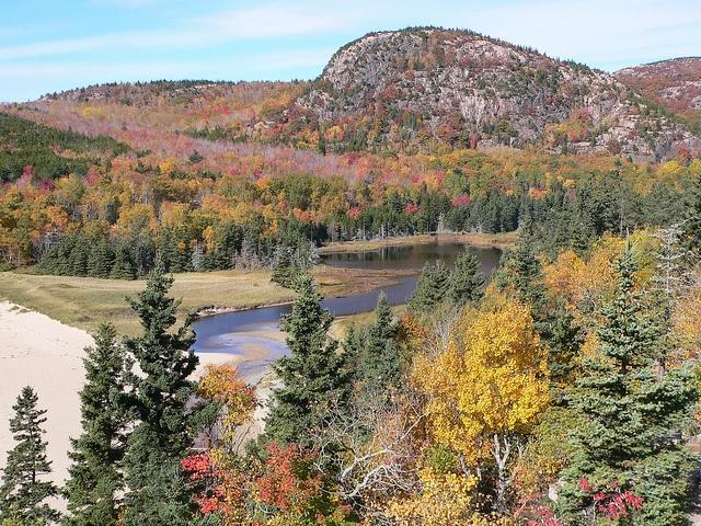 90-percent-of-Maine-is-covered-by-forests.jpg