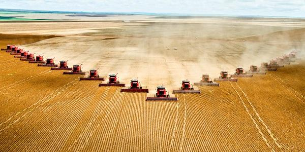 A-soy-farm-in-Brazil-1.jpg
