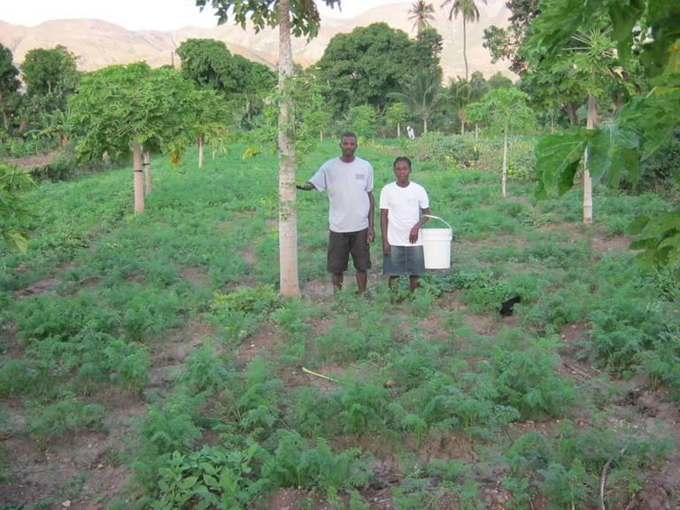 An-agroforestry-project-near-Gonaives-Haiti.jpg