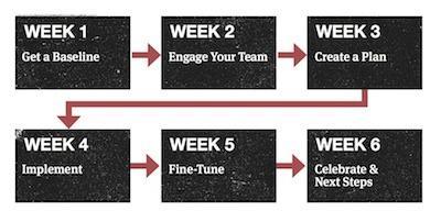 B-Corp-Certification-Six-Week-Chart.jpg