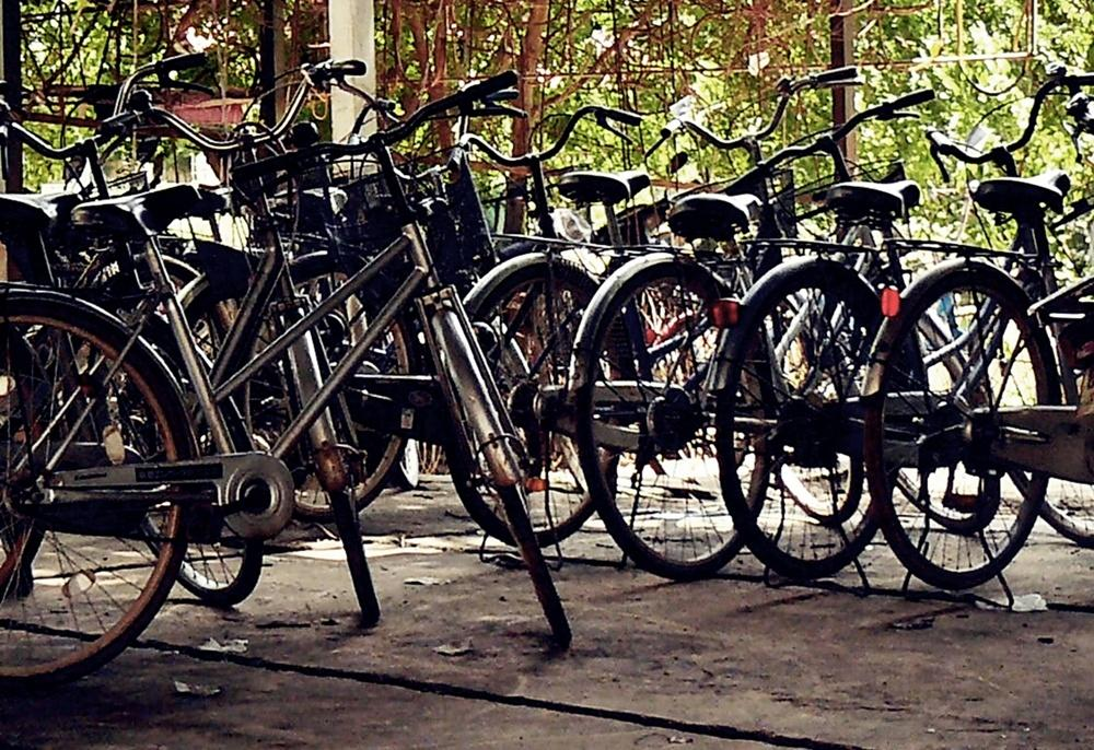 Bicycles-by-Vivera-Siregar.jpg