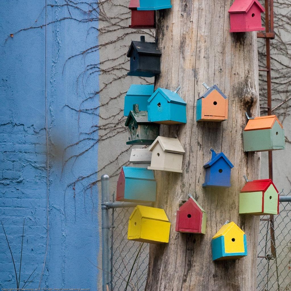 Bird-Houses-by-See-Ming-Lee.jpg