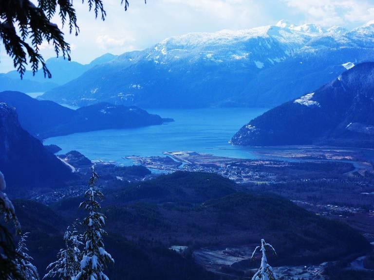 Canada_softwood_lumber_BC_JenniferC.jpg