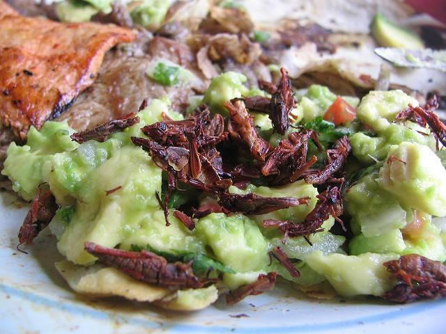 Chapulines-are-now-creating-buzz-at-Seattles-Safeco-Field.jpg
