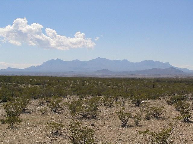 Chihuahuan-desert.jpg