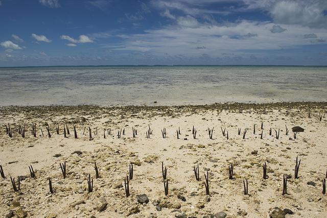 Climate-Change-Effects-in-Island-Nation-of-Kiribati.jpg