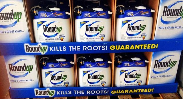 Controversies-over-Roundup-is-one-reason-why-a-Bayer-takeover-of-Monsanto-makes-some-nervous.jpg
