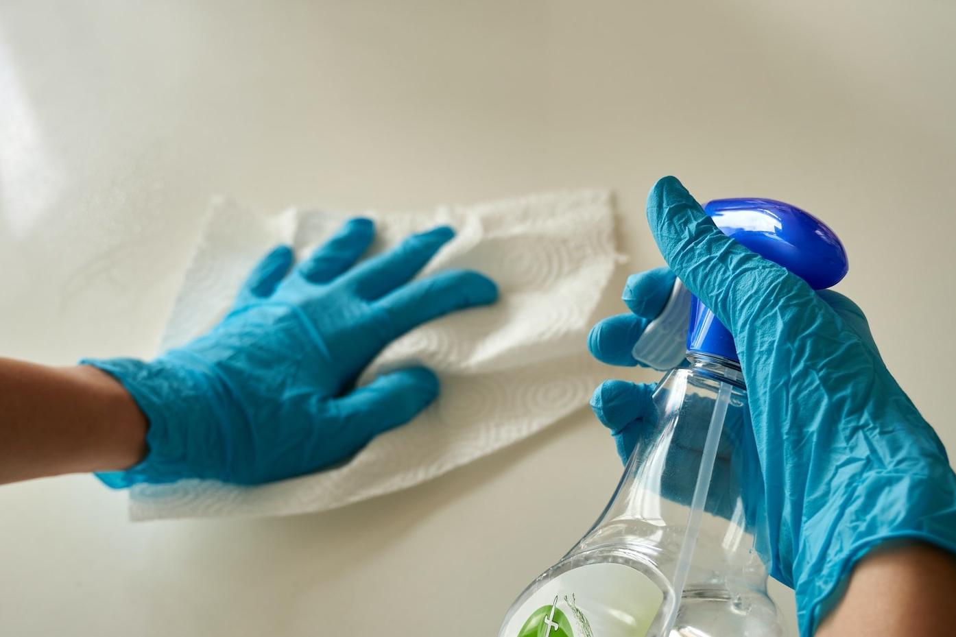 house cleaning domestic workers