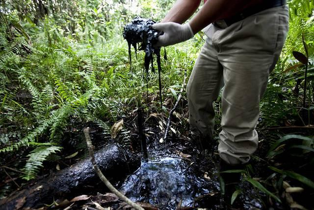 Ecuador-rainforest-oil-exploration.jpg