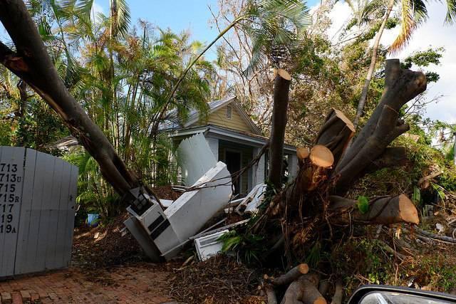 Florida_solar_Cayobo.jpg