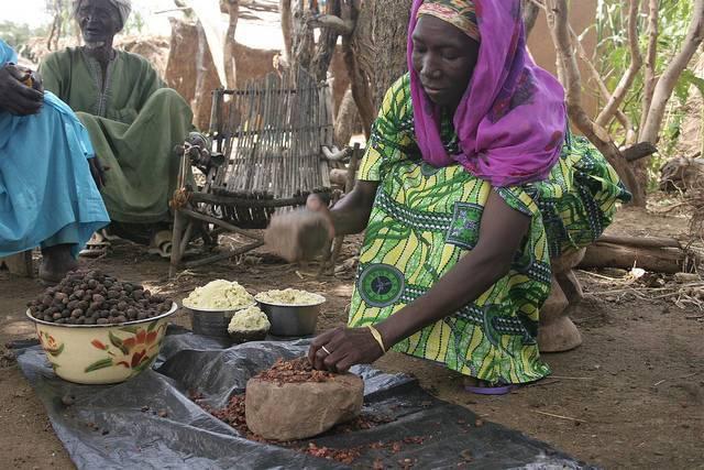 G20_women_entrepreneurs_TREEAID.jpg