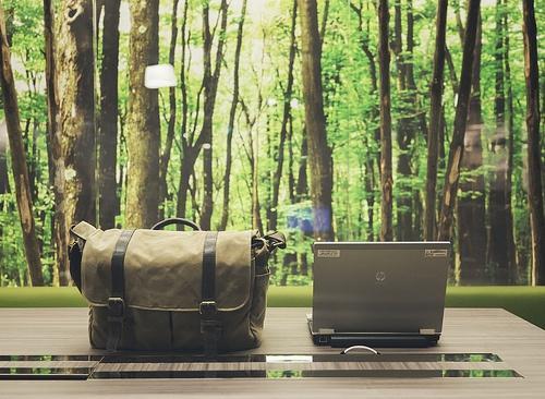 GreenOffice_Zhao1.jpg