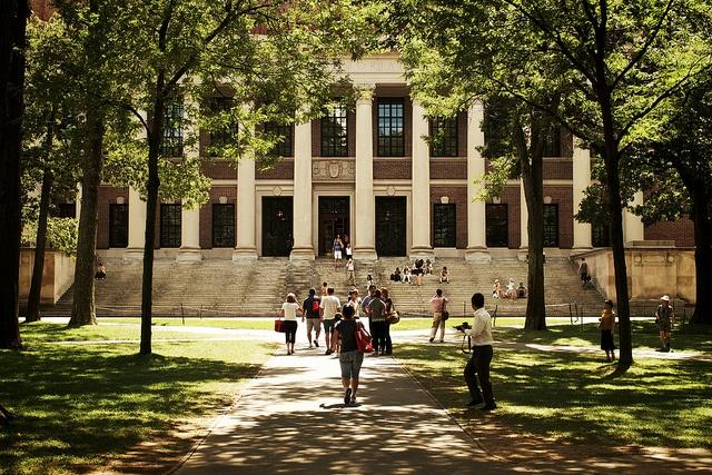 Harvard_University_VirtualWolf.jpg