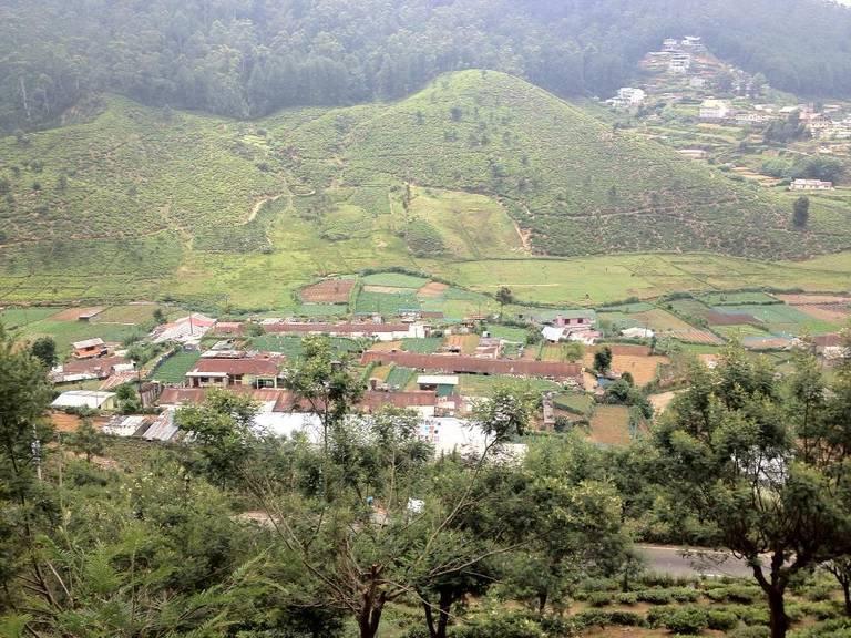 Leon-Kaye-farming-tea-country-Sri-Lanka.jpg