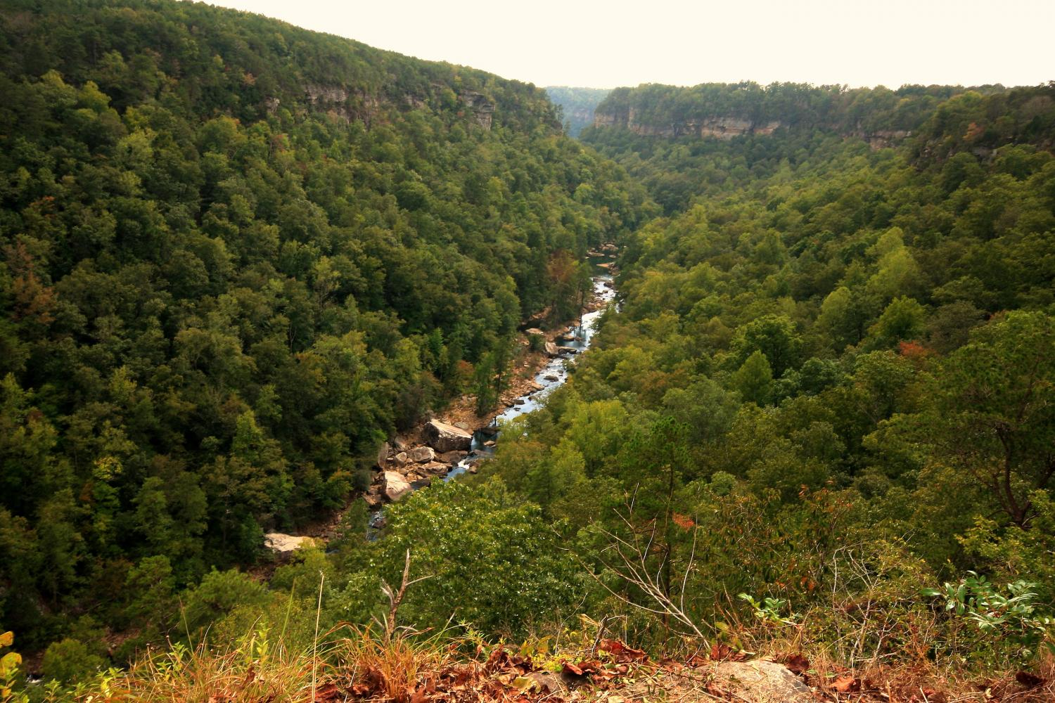 Little River Canyon, Fort Payne, Alabama.