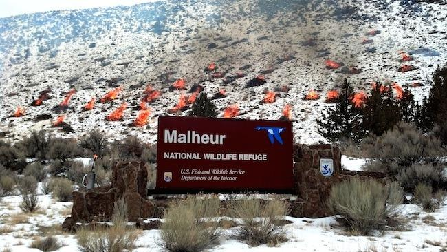 Malheur-National-Wildlife-Refuge-burn.jpg