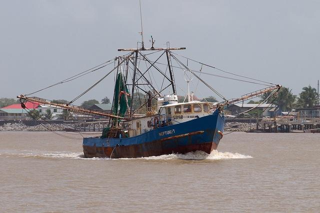 Maritime_Stewardship_Council_Suriname-MSCBenelux4.jpg