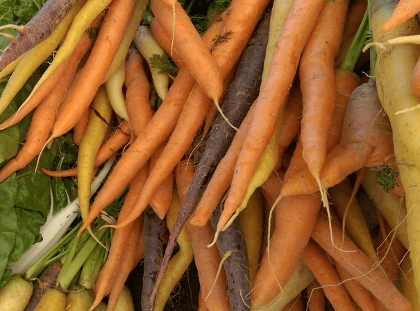 Organics-are-narrowing-the-price-gap-with-conventionally-grown-crops.png