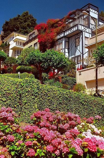 San_Francisco_residence_Airbnb_DOhmer.jpg