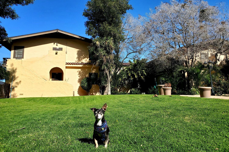Local Tourism - Santa Maria Inn