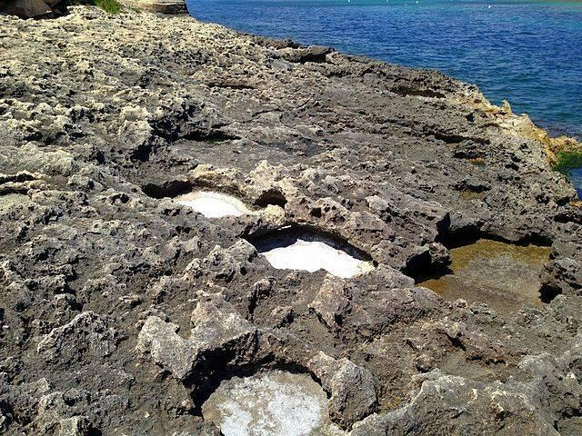 Sea-salt-deposits-in-Malta.jpg
