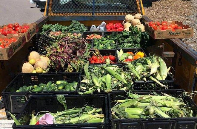 The-Foraged-Feast-delivery-truck-is-loaded-with-fresh-produce-for-delivery-to-Denver-food-service-organizations..jpg