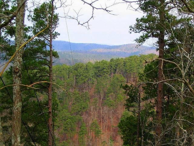 The-Ouachita-Mountains-in-Arkansas.jpg