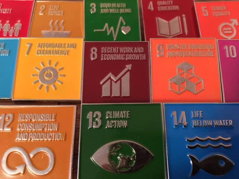 The-UN-Sustainable-Development-Goals.jpg