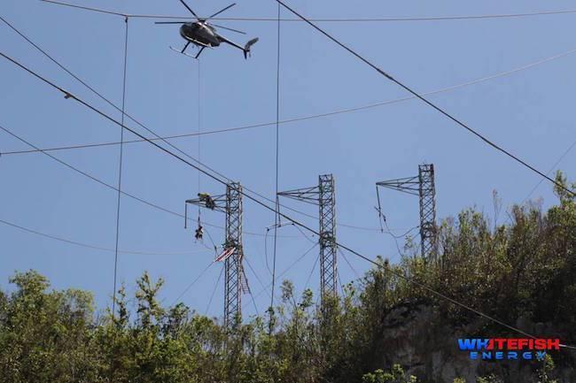 Whitefish-Puerto-Rico-electricity.jpg