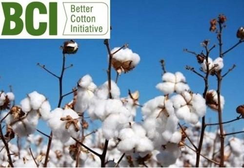 better-cotton-initiative2.jpg