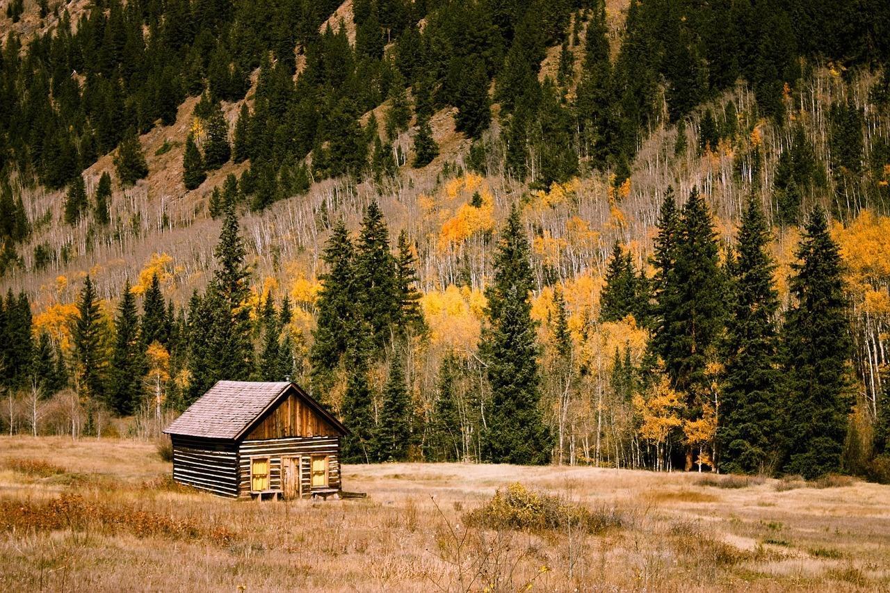 cabin-1208195_1280.jpg