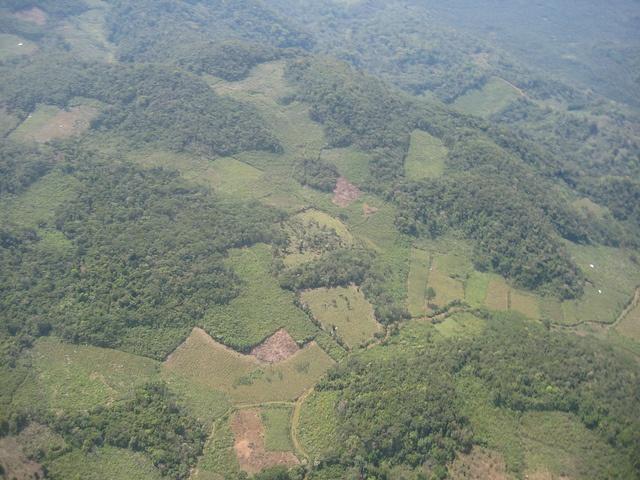 climate_Mexico_deforestation_SDerle.jpg