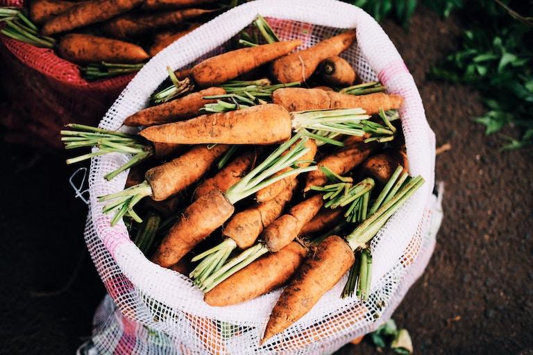 farm-carrots-in-sack.jpg