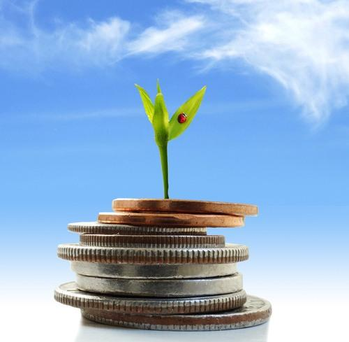 green-shoot-growing-from-a-stack-of-coins.jpg