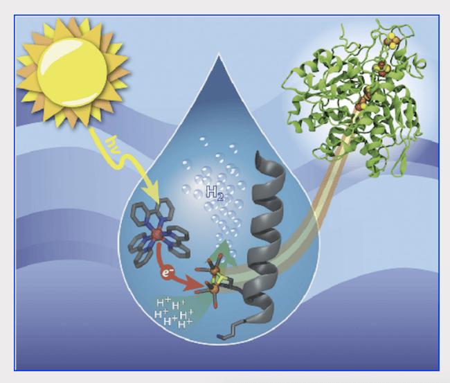 hydrogen-circular-economy.png