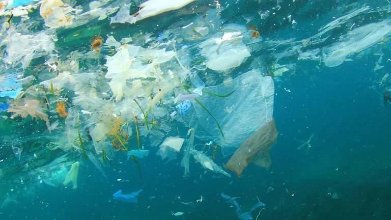 ocean-plastics.jpg