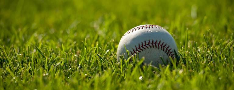 p11_baseball_AdobeStock_8904748.jpeg
