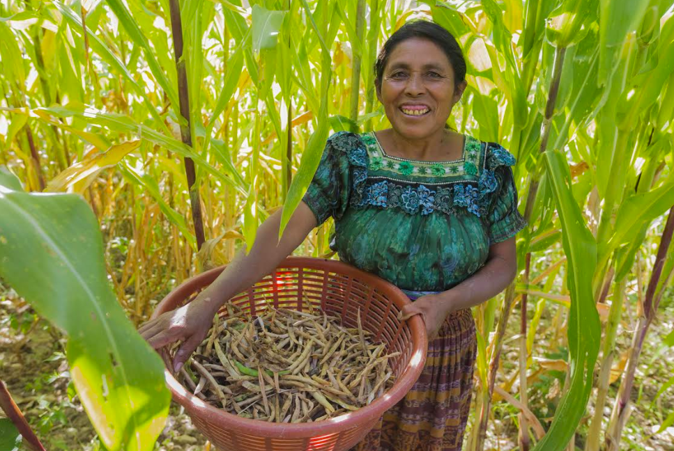 PepsiCo not only seeks to help farmers across its global supply chain become more sustainable, but the food and beverage giant is also striving to ensure women farmers find increased success in their work as well.