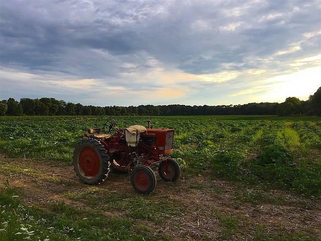tractor-2604205_640.jpg