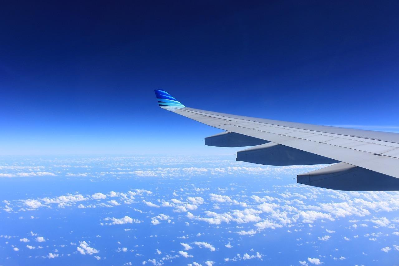 wing-221526_1280-1.jpg