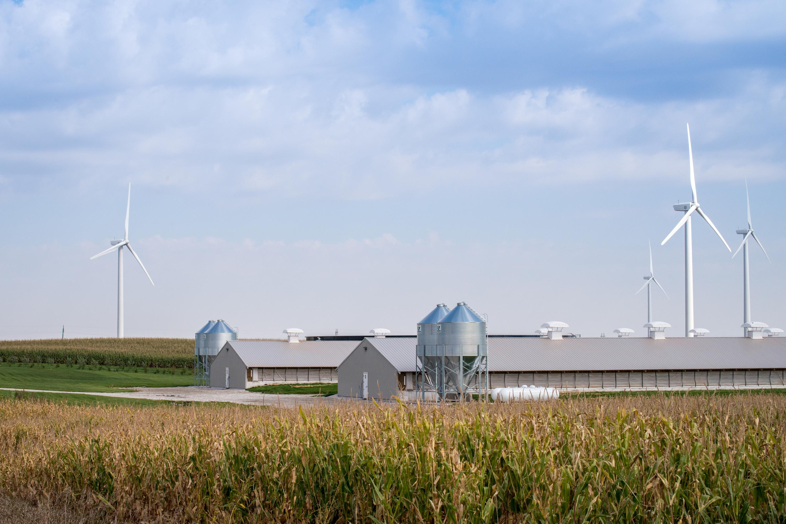 renewable energy in agriculture